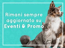 eventi_mc_fido_negozio_per_animali_firenze-270x200