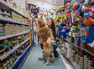 mc_fido_negozio_per_animali_firenze