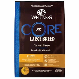 Wellness CORE Large Breed – Puppy Dog